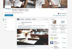 Member Intelligence Group LinkedIn Page